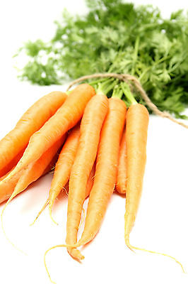 Carrot Seeds - *SHERBET* - Pale Orange - Heirloom Variety - 50+ Seeds