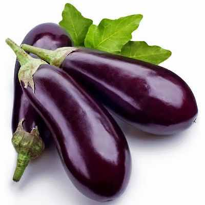 Eggplant Seeds - CAPPI - Great Tasting, High Yielding - F1 Hybrid - 10 Seeds