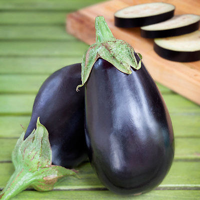 Eggplant Seeds - CLASSIC BLACK - Easy to Grow - Gmo Free - 25 Seeds