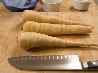 Parsnip Seeds - HARRIS MODEL - Pastinaca Sativa - Gmo Free - 50 Seeds