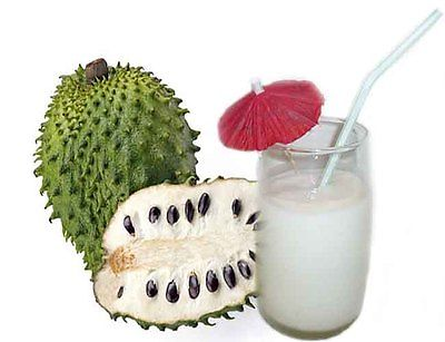 Organic Soursop Seeds - Medicinal Fruit - Antimicrobial Agent  - 10 Seeds