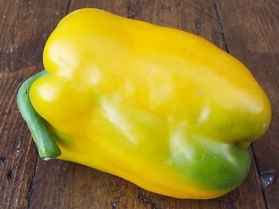 Sweet Bell Pepper Seeds - SUPER HEAVY WEIGHT YELLOW - theseedhouse - 20 Seeds