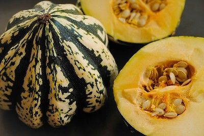 Pumpkin Seeds - SWEET DUMPLING - Light with Dark Green Stripes - 10 Seeds