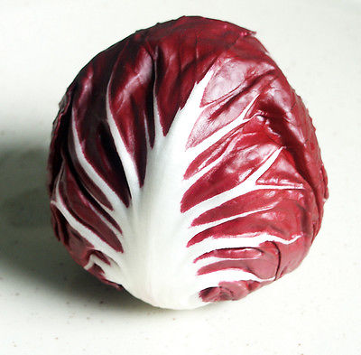 Radicchio Seeds ~ Italian Chicory ~ Very High in Fibre ~ Perennial ~  50+ Seeds