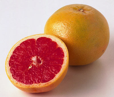 Grapefruit Seeds - RUBY RED - Citrus Fruit - Medical Benefits - 10 Seeds